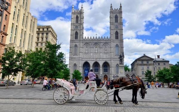 جاذبه های گردشگری مونترال | جاذبه های مونترال
