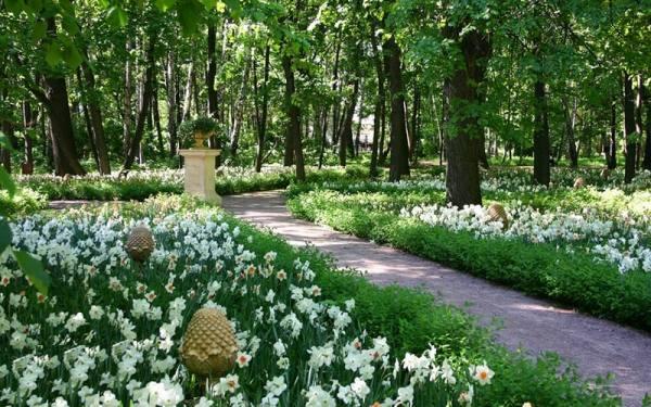 جاذبه های گردشگری مسکو | جاذبه های مسکو