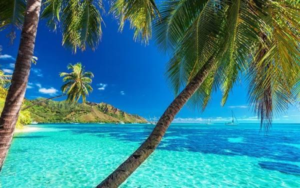 جاذبه های گردشگری دومینیکا