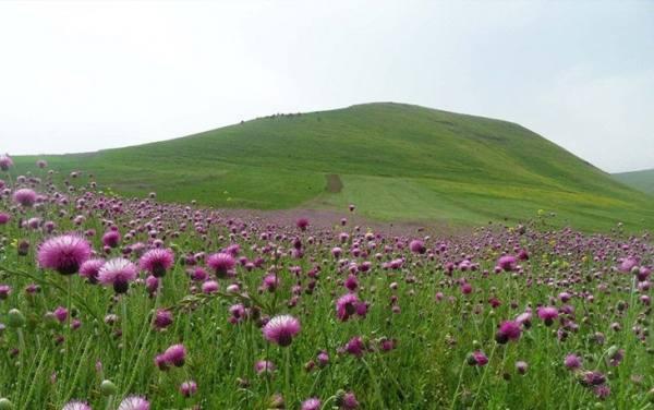 طبیعت اردبیل