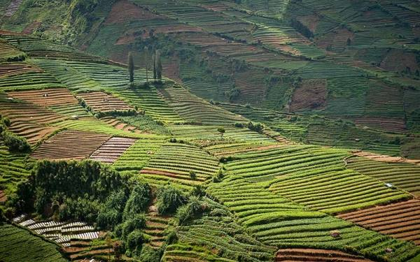 فلات دییِنگ | Dieng Plateau