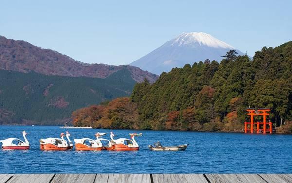 جاذبه های طبیعی ژاپن
