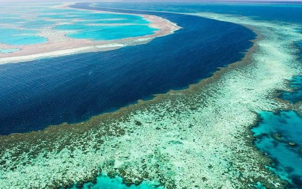 دیواره ی مرجانی بزرگ
