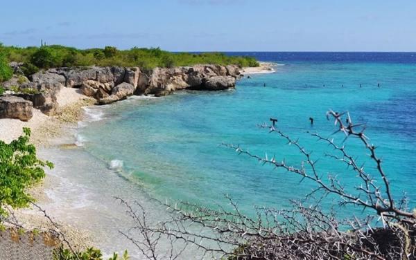 ساحل دایرکتورز | Directors Beach