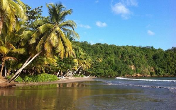 سواحل کارائیب