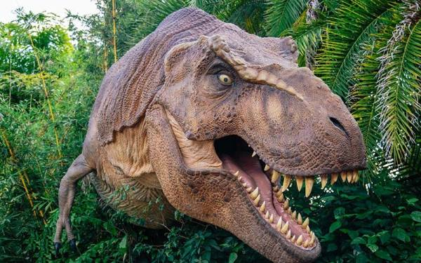 تحقیق درمورد دایناسور