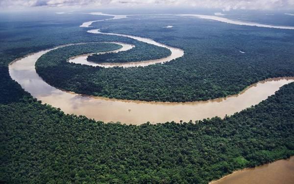 آمازون | Amazon