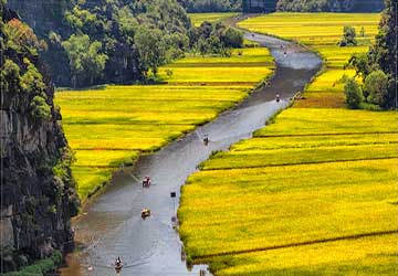 Rowing Through in Vietnam
