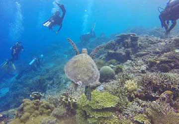 Scuba Diving Bucket List