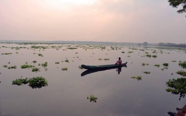 حوضچه های کرالا هندوستان