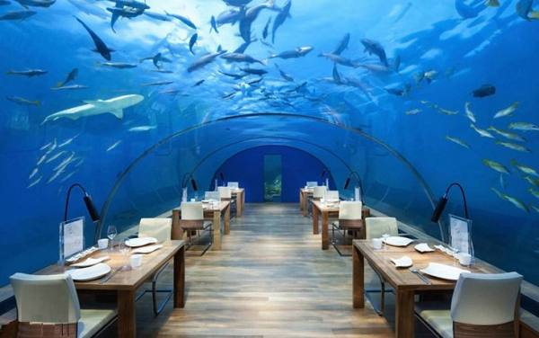 هتل های زیردریایی جهان | هتل زیردریایی | هتل زیردریایی پوزیدون در فیجی | The Poseidon Underwater Resort